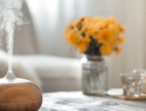 How to Keep Your Home Smelling Fresh: Tips for Deodorizing and Making the Home Scent Good